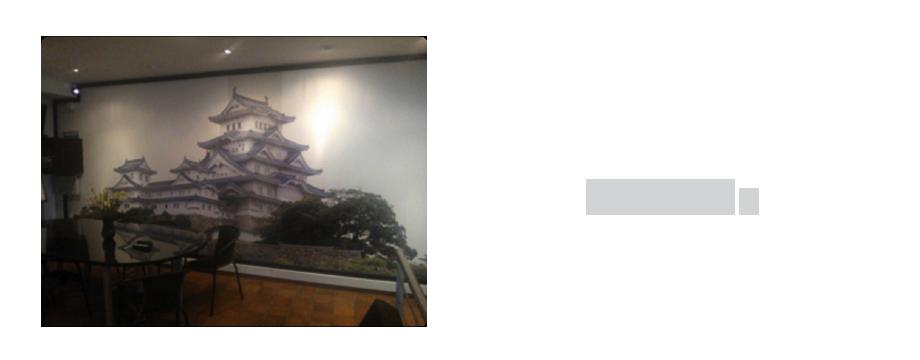 Murales- Impr Difg